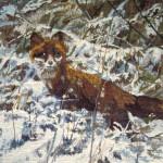 fox-pieter dik